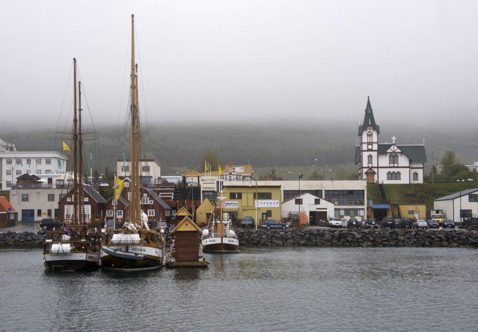 Islandų sėkmės principas: gamtos gėrybes atiduoti į mokslininkų rankas