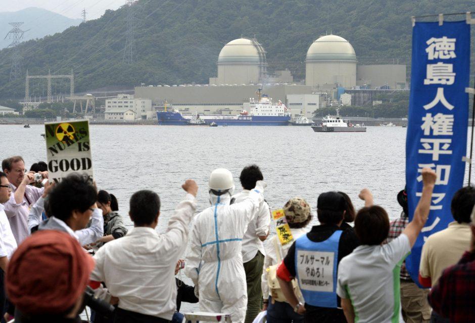 Avarijos ištikta Fukušimos atominė jėgainė tikriausiai skleidžia radioaktyvius teršalus jūroje
