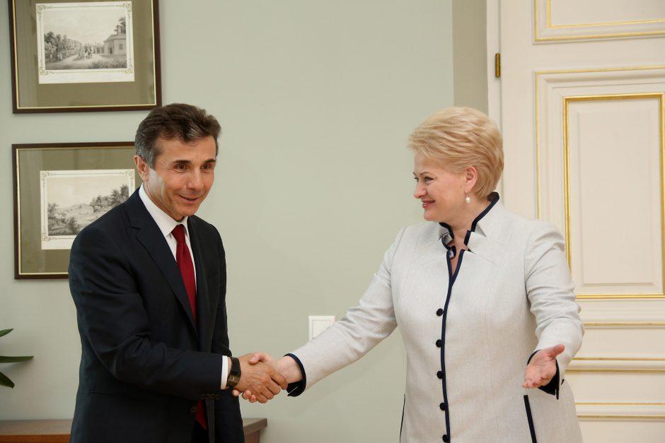 Prezidentė: europinė Gruzijos ateitis priklausys nuo demokratinės pažangos
