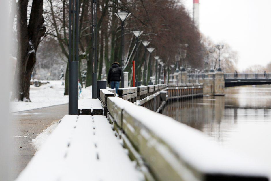 Buvo nuostabi žiema