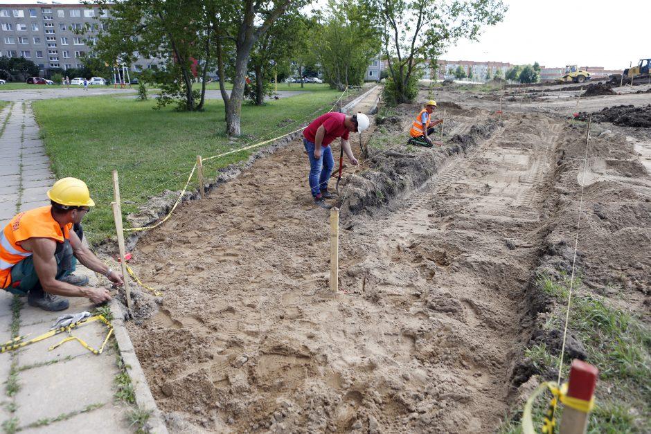 Sąjūdžio parke – darbų įkarštis