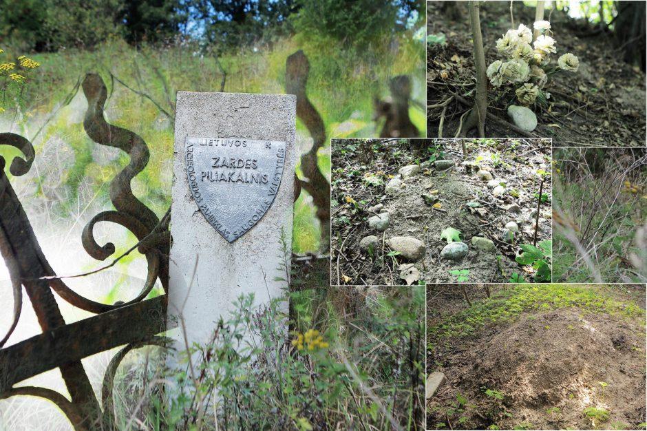 Žardės piliakalnį miestiečiai pavertė gyvūnų kapinėmis