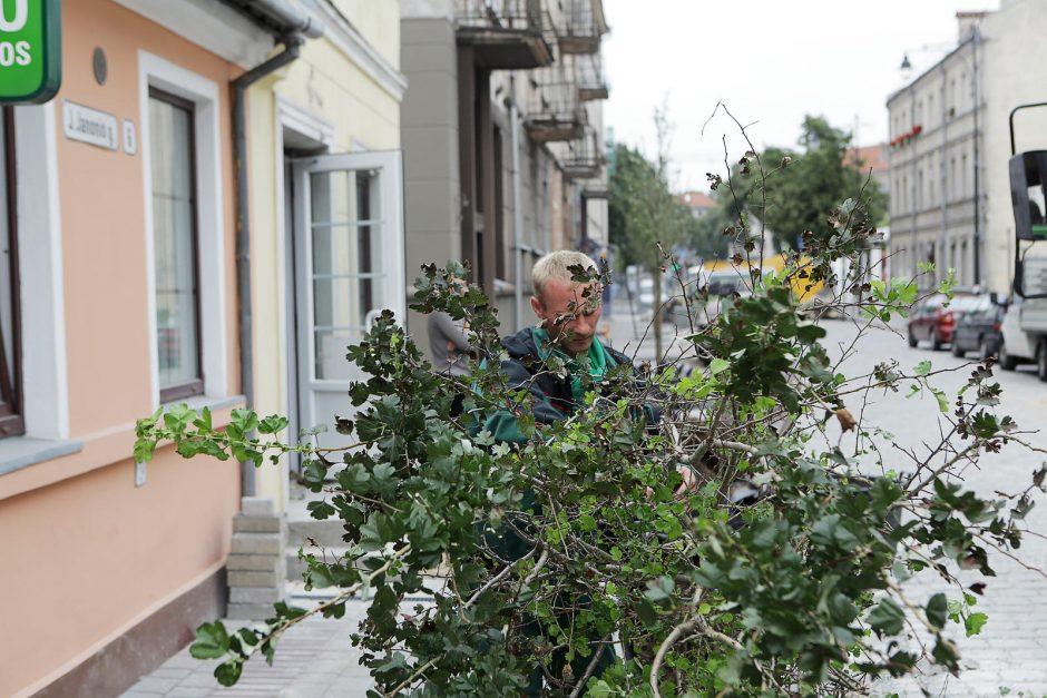 J. Janonio gatvės rekonstrukcija – finišo tiesiojoje