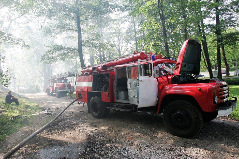 Dėl gaisrų pavojaus ribojamas patekimas į miškus (draudimai galioja 17 rajonų)