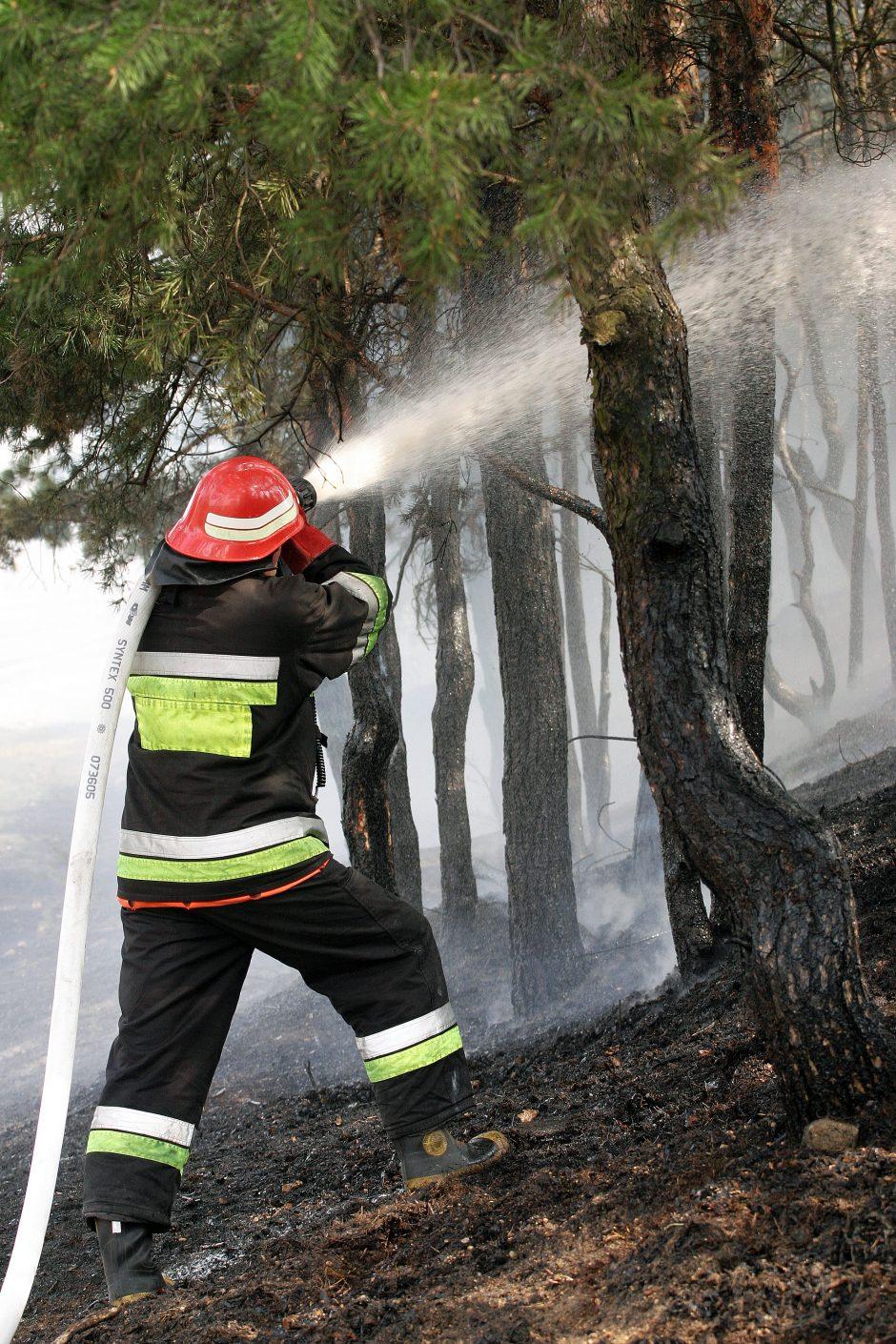 Ugniagesiams pavyko suvaldyti didelius miško gaisrus