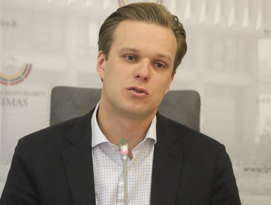 VTEK  pradėjo tyrimą dėl G. Landsbergio nedeklaruotų akcijų