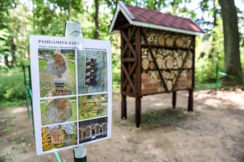 Mugė botanikos sode