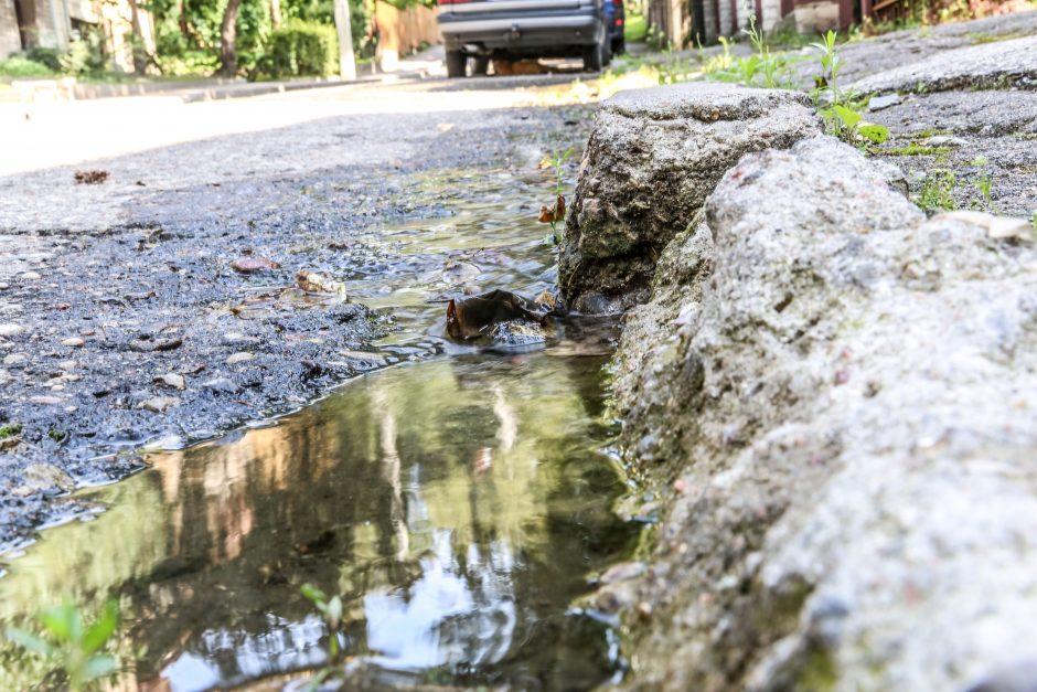 Vandentiekio avarija Dainos gatvėje