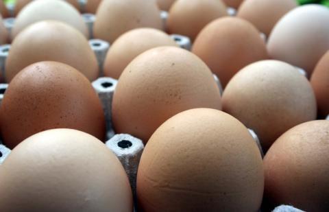 Iš trečiųjų šalių įvežti kiaušiniai turi būti papildomai paženklinti