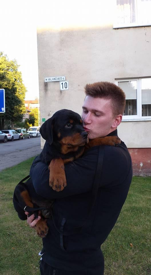 Šunį čempioną palaužė nuodai: po pasivaikščiojimo parke neišgyveno nė paros