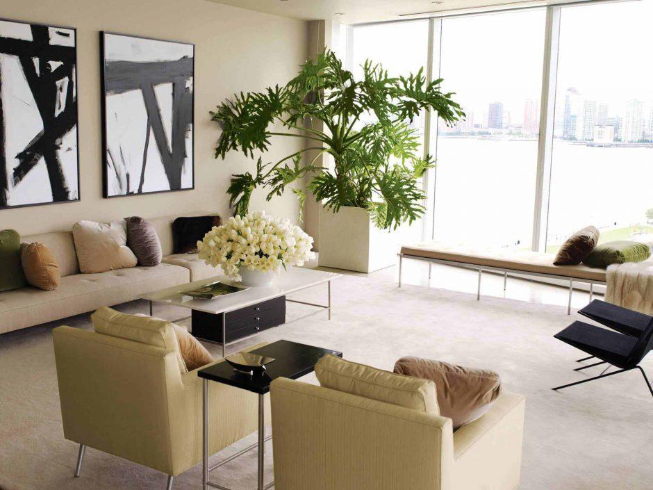 Žaliosios kambarių puošmenos: idėjos namams