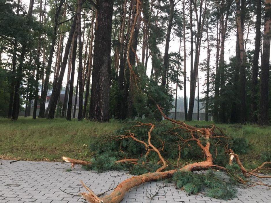Po audros elektros vis dar neturi 900 žmonių