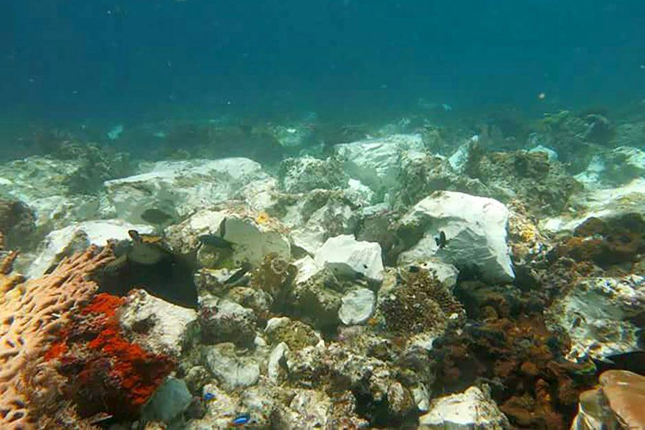 Britų laivas apgadino Indonezijos koralinį rifą