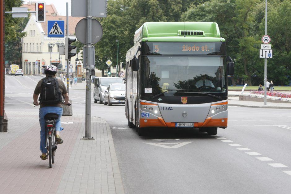 Mieste – nauji autobusai