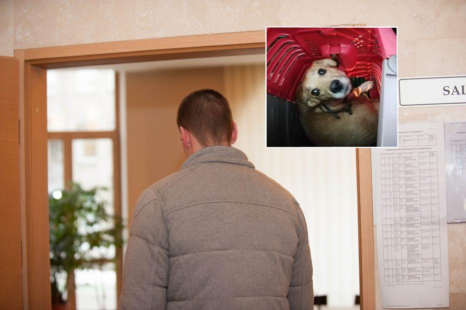 Į konteinerį išmesto šuns šeimininkė dingo pati?