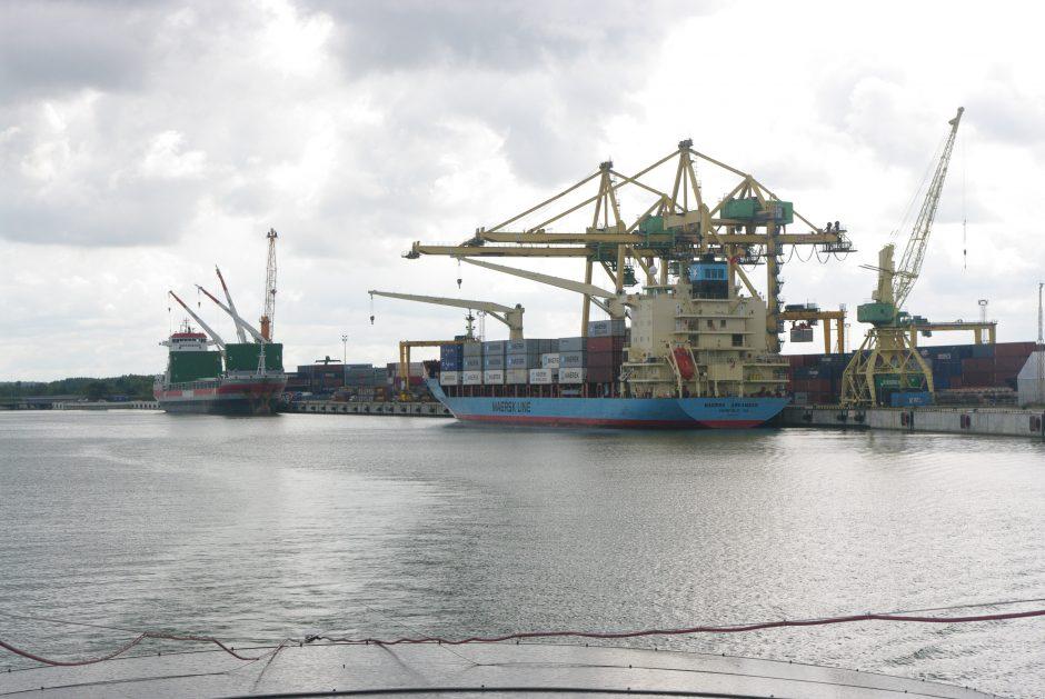 Klaipėdos uostas - konteinerių krovos vidutiniokas