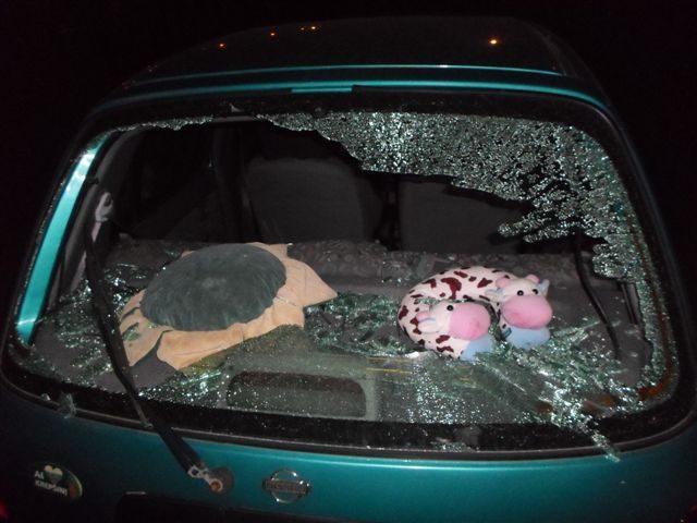 Paryčiais daužė automobilio langus, parduotuvės palanges