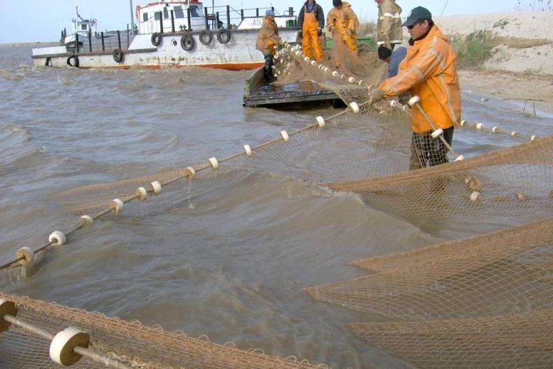 Žvejyba Baltijos jūroje, apaugusi paslaptimis