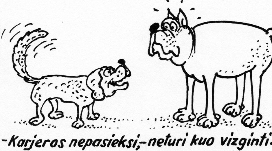 Kaimynai kankina savo šunį