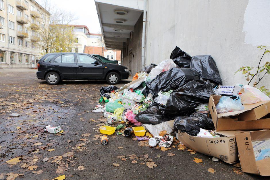 Klaipėdos miesto centre – sąvartynas