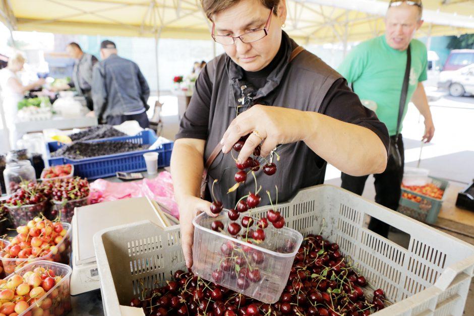 Siutina vaisių ir uogų kainos