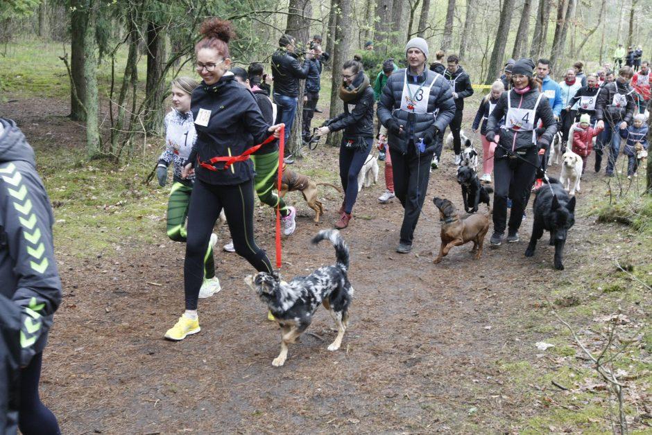 Gyventojai Šuns dieną minės bėgdami