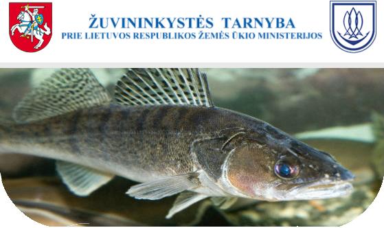 Paaiškėjo, kas laimėjo Žuvininkystės tarnybos konkursą