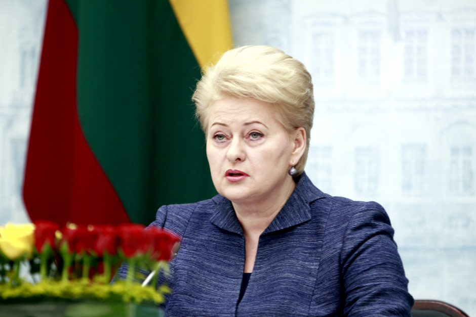D. Grybauskaitė: jaunimo nedarbui mažinti 2014-2015 metais Lietuva gali tikėtis 900 mln. litų ES paramos