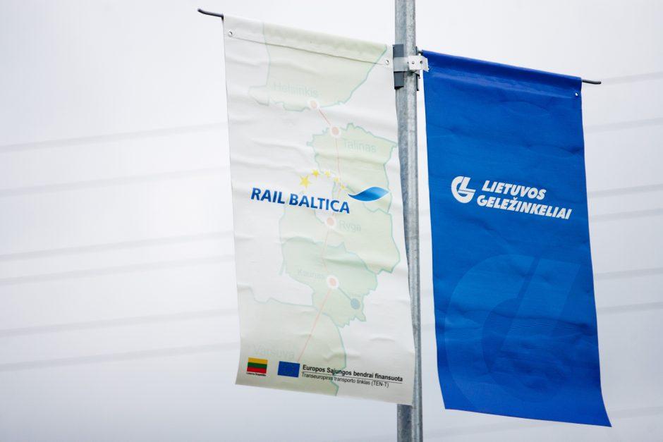 """Ar projektui """"Rail Baltica"""" negresia Visagino AE likimas?"""