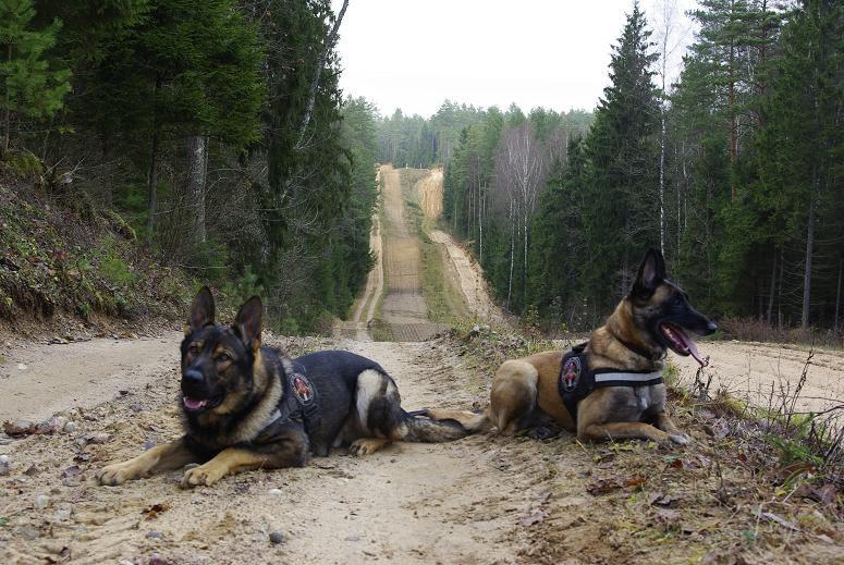 Vilniaus rajono kontrabandininkai pateko į tarnybinių šunų pasalą