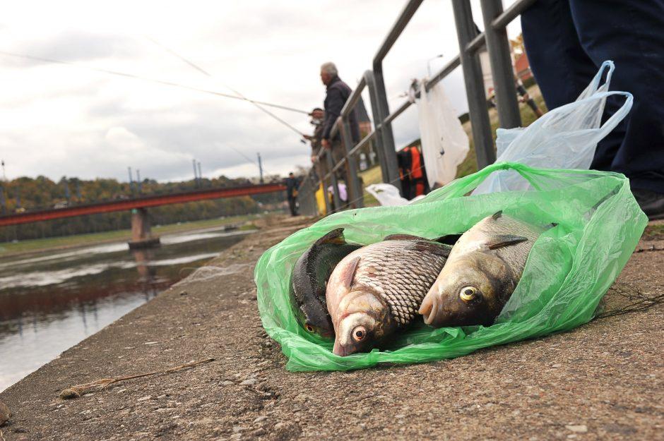 Nekurkime žvejų pragaro