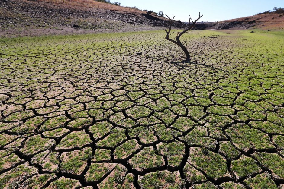 Pasaulyje sparčiai daugėja klimato sąlygotų gamtos katastrofų