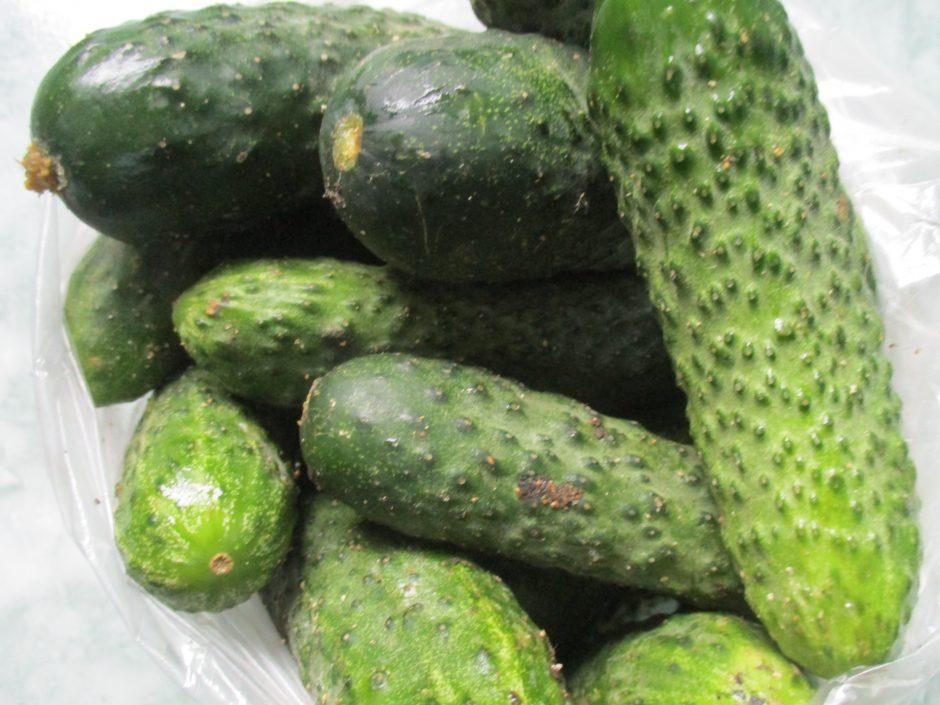 Lenkiški agurkai tuština lietuvių kišenę