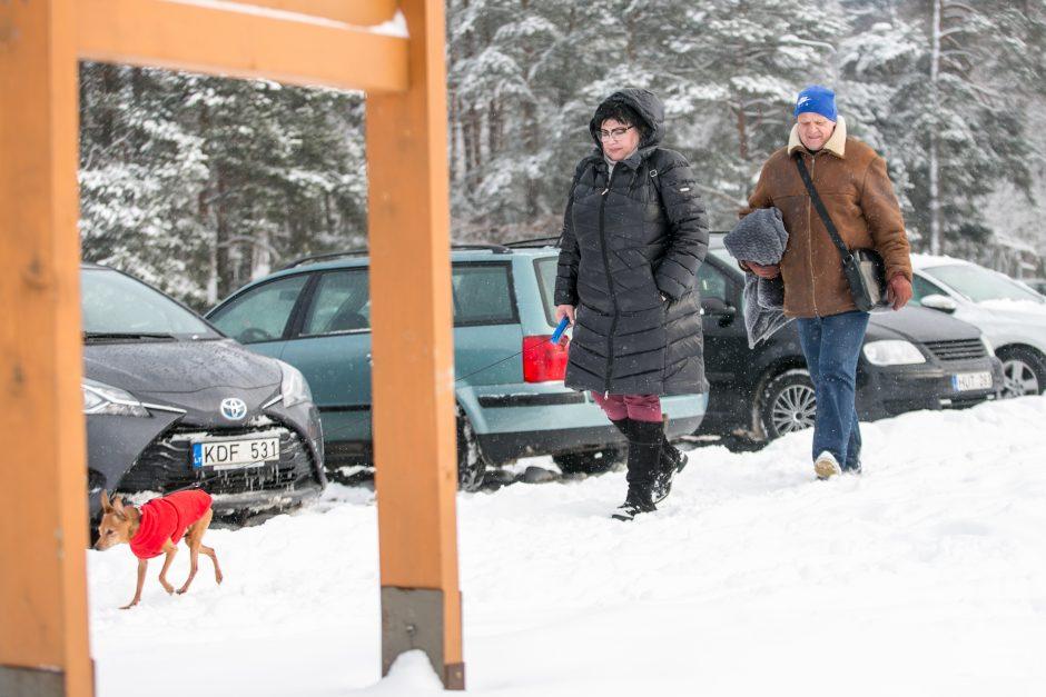 Žiemos pramogos Kaune