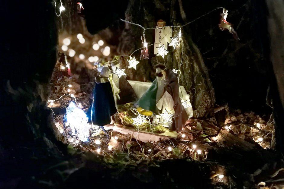 Kopūstų lauke – balzaminės tuopos šventė
