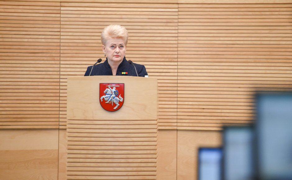 Devintasis D. Grybauskaitės metinis pranešimas Seime