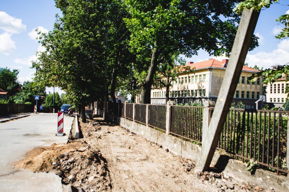 Gatvės rekonstrukcijos kaina -  šimtametis ąžuolas
