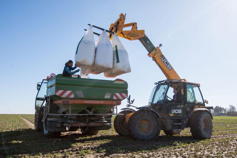 Pakaunės ūkininkų valdose – pavasario darbymetis