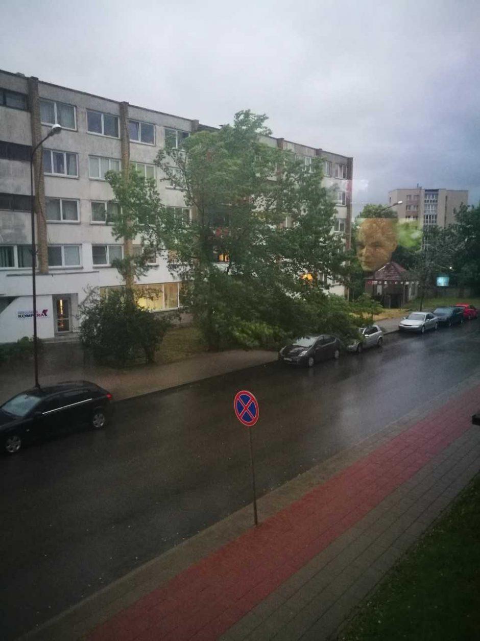 Lietuvą siaubia lietus ir viesulas