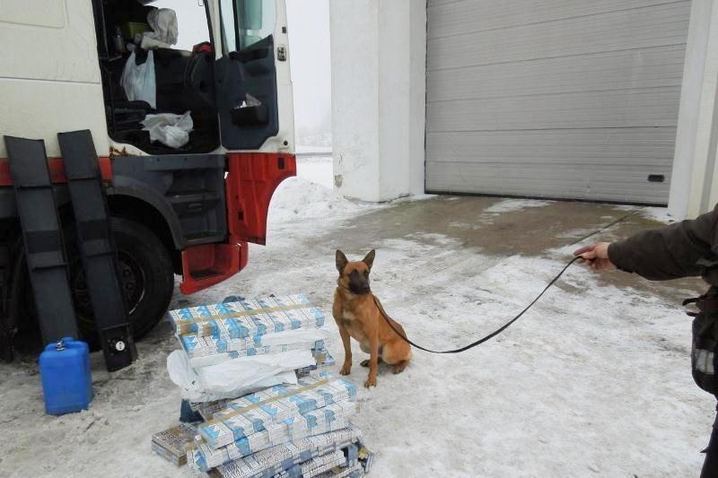 Automobilyje paslėptus rūkalus užuodė muitininkų šuo