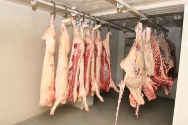 Iš Rokiškio rajone esančios fermos pavogta 200 kilogramų skerdienos