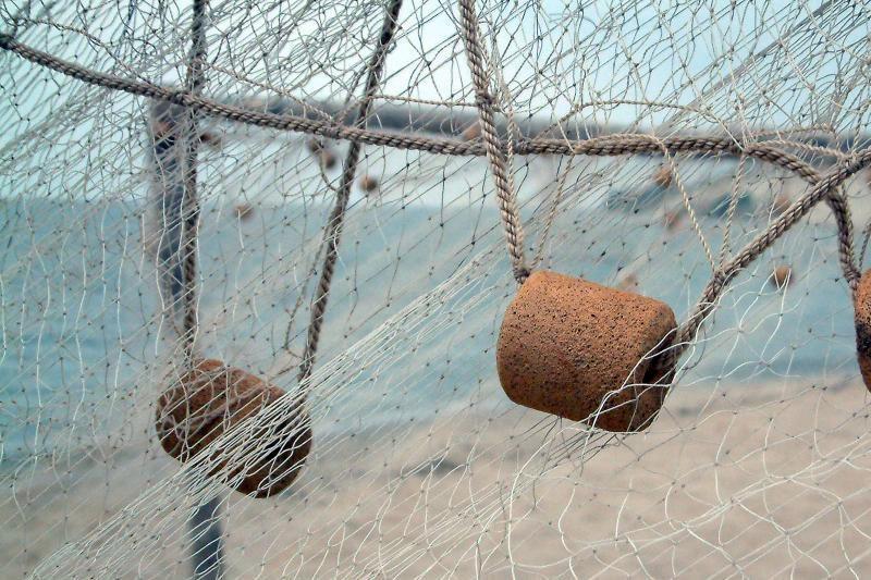 Alytaus policija sunaikino nelegalius žvejybos tinklus