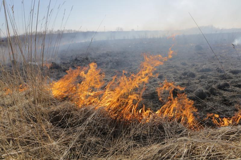 Žolės deginimas baigėsi senolio mirtimi