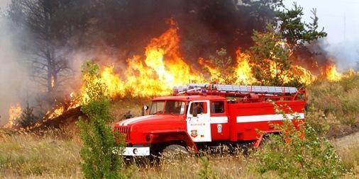Rusija prašo Lietuvos pagalbos gaisrams gesinti