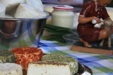 Migdomųjų pakaitalas – gabalėlis sūrio