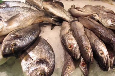 Šiauliuose pradėjo veikti žuvų turgus