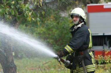 Ugniagesiai teikė pagalbą ugnyje ir vandenyje