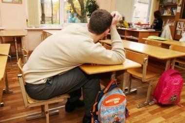 Vilniaus rajono lietuviškos mokyklos prašosi ministerijos globon