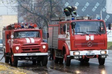 Vilniaus ugniagesiams teko daug dirbti
