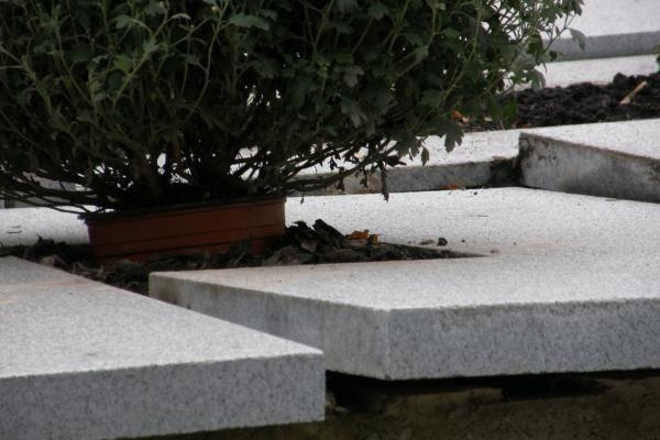 Skaitytojo informacija: Antakalnio kapinėse pasidarbavo vandalai